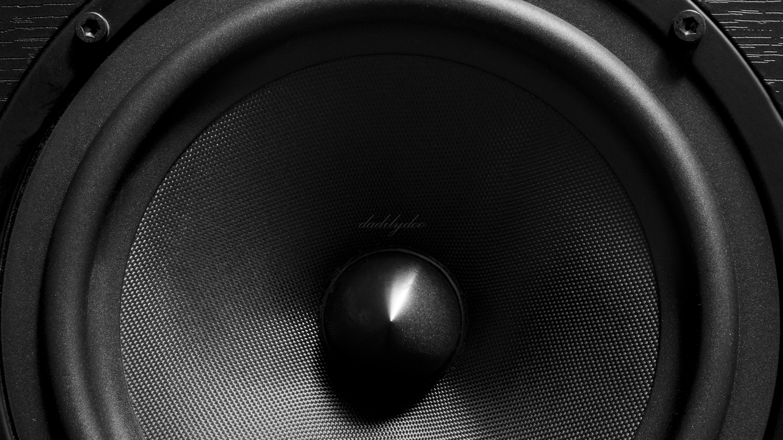 dadilydoo04-speaker